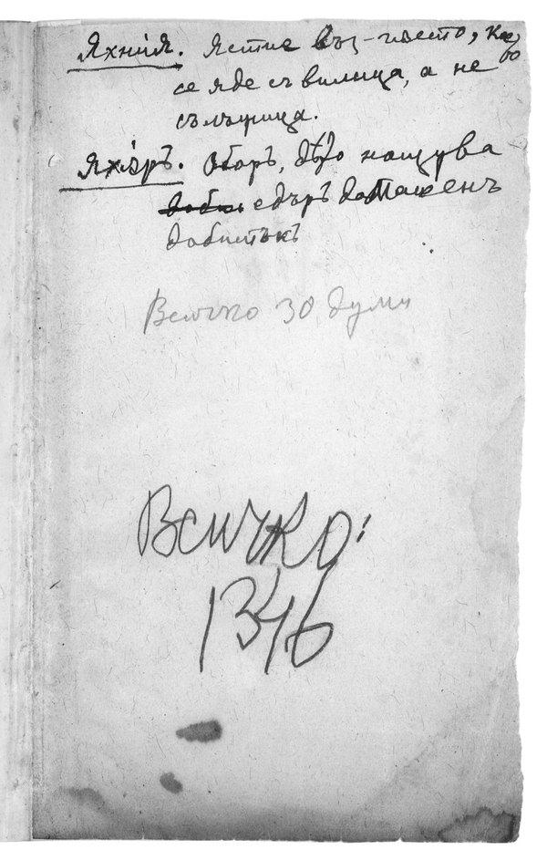 Възвание към българския избирател с употребление на турски думи, циркулирали в Пирдопския край до 1885 г.