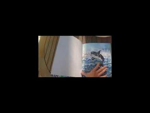 """Embedded thumbnail for Четем """"Великото приключение на малкото китче Съни"""""""