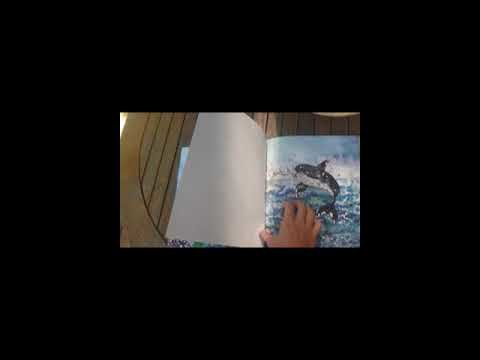 """Embedded thumbnail for Reading """"The Great Adventure of the Little Whale Sunny"""""""