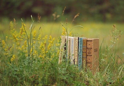 Базар на книгата под небето на НДК. КИБЕА – шатра 2